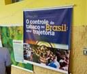 Trajetória do tabaco no Brasil